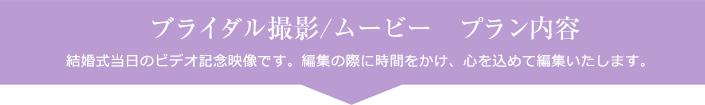 ブライダル撮影/ムービー プラン内容
